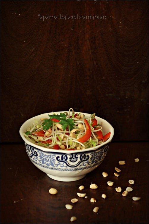 Thai Style Crunchy Cabbage, Sprouts & Peanut Salad (GF, V ...